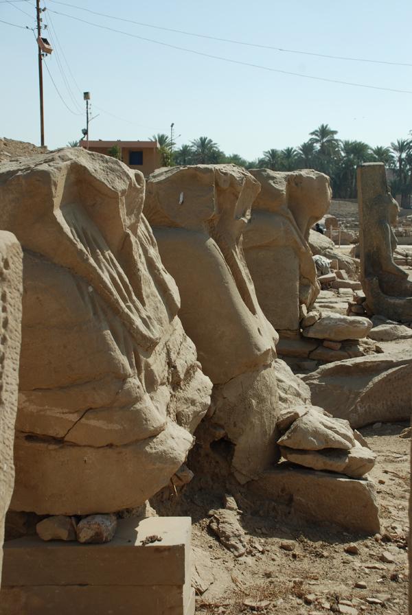 Ramesses III sphinxes