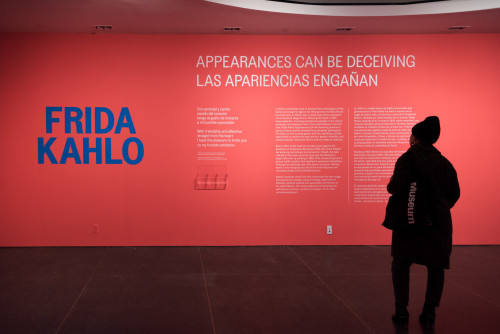 """A visitor study of """"Frida Kahlo"""" was a perfect project for some of my Pratt grad students."""