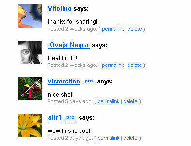 flickr_comments.jpg